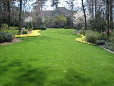 Estate Landscape Maintenance